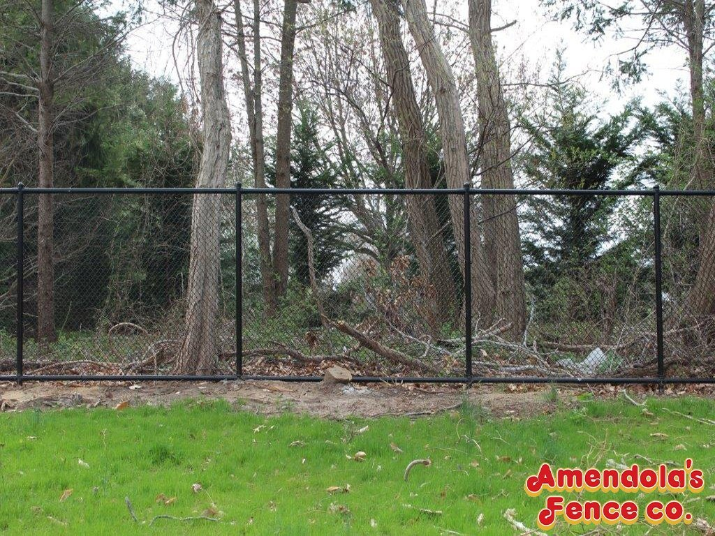 Amendolas Fence